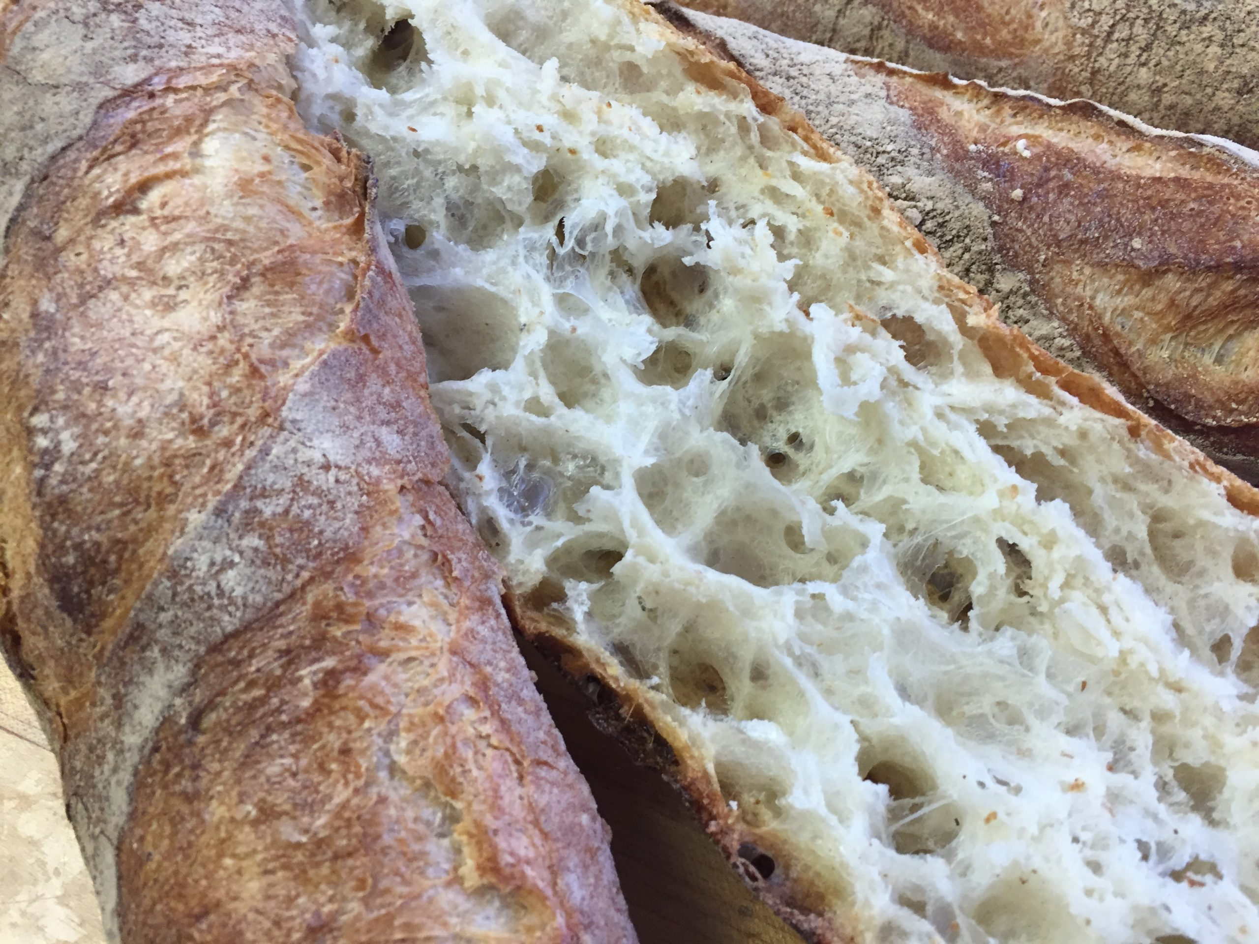 French Baguette recipe made with Poolish